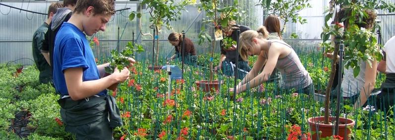 Le métier d'horticulteur -Parcours emploi -